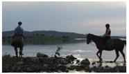 Horseriding 1